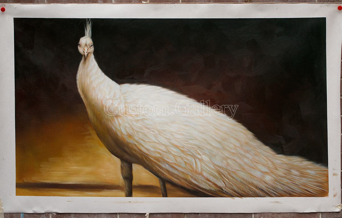 Peacock Oil Painting Reproduction